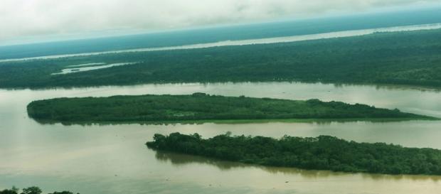 Sema apresenta, hoje, projeto de Lei de Serviços Ambientais ... - wordpress.com