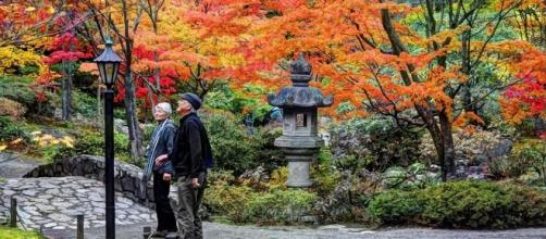 America the Beautiful in Autumn: Peak Fall Foliage Dates for 48 ... - lovethesepics.com