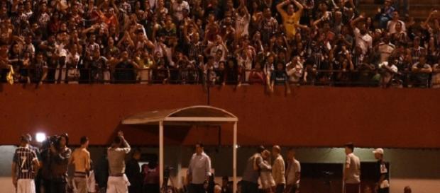 Fluminense e Édson Passos: um casamento de frutos ao Tricolor em 2016 (Foto: Mailson Santana/Divulgação FFC)