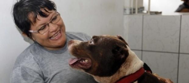 Pitbull que intimidou os presos impedindo fuga