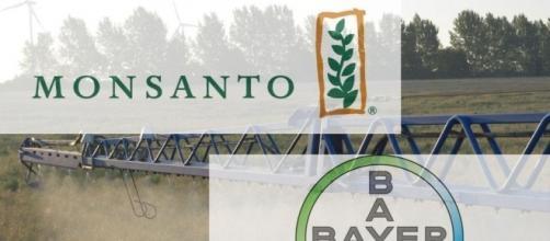 L'unione tra i colossi della chimica Bayer e Monsanto