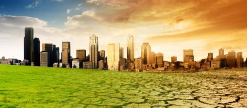 Climate Change Central - Going Green? - climatechangecentral.com