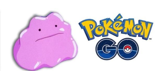Pokémon GO: por qué Ditto no aparece en el juego