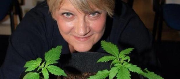 Rita Bernardini coltiva cannabis