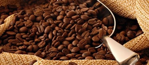 O cenário de paz na Colômbia facilita produzir mais café