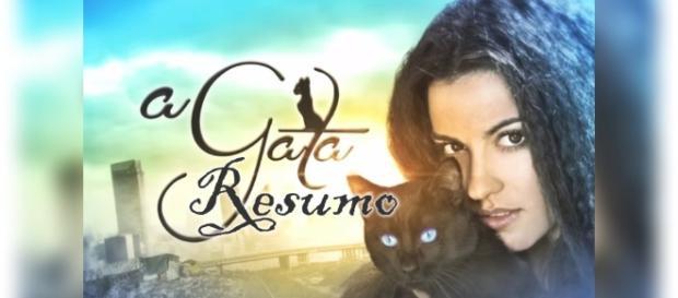 Resumo da novela do SBT, 'A Gata'