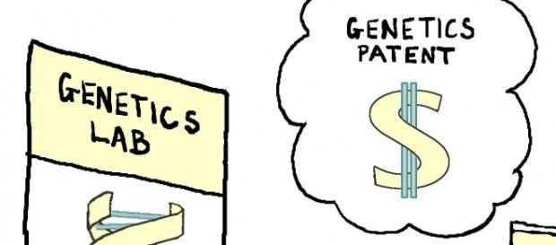 Gene patent should not be backlashed. Source: https://www.geneticliteracyproject.org/wp-content/uploads/2014/11/cartoon-Biopoliticaltimes.com-.jpg