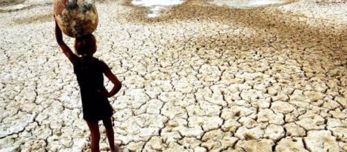 Desertificação: o planeta perde solos férteis aceleradamente - dialogosessenciais.com
