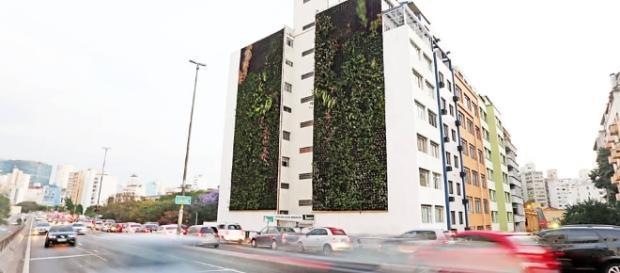 Jardins verticais do Minhocão: bom de se ver e de se respirar