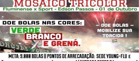 Torcida lança campanha para promover grande festa de apoio ao Fluminense no sábado (Foto: Facebook)