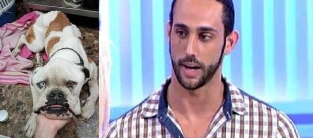 Javi C. acusado de maltrato animal hacia su perro