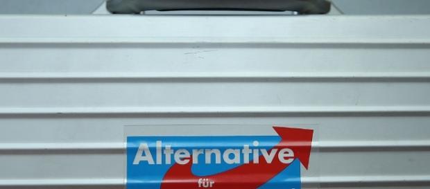 Alternativa per la Germania, l'estrema destra tedesca