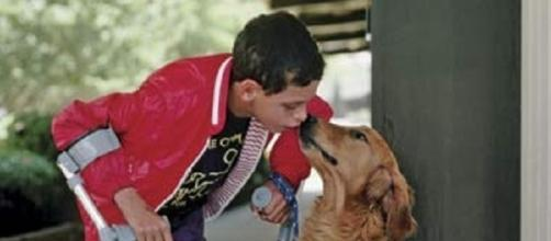 Boy with special needs and service dog separated. (Flickr)