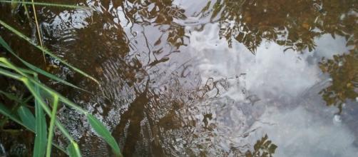 Água pura e limpa, sem poluição