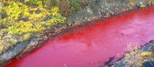 Russian River Mysteriously Turns Blood Red - ABC News - go.com