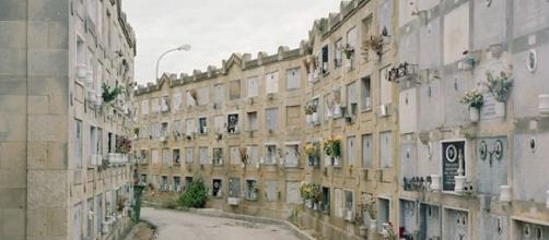 Trapani, ancora polemiche sulla questione relativa alla pulizia del cimitero - socialtp.it