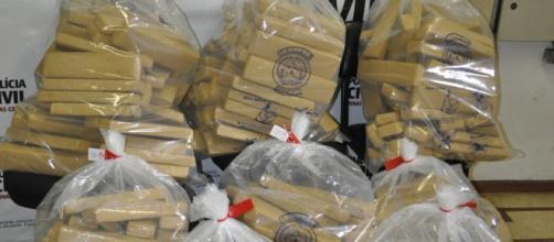 Os 265 quilos de maconha foram apreendidos pela Polícia no bairro Vila Francisco Mariano, em Contagem