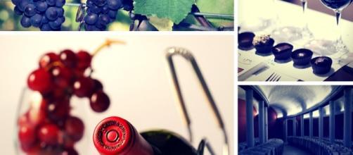 El mundo del vino, una de las maravillas creadas por el hombre