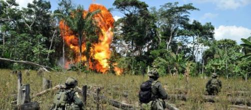 FDN se juntou às Farc para realizar atentados terroristas no Brasil