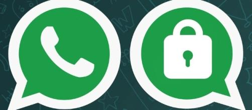 The WhatsApp Encryption update means you can now communicate ... - kachwanya.com