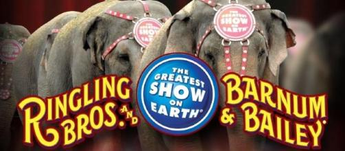 """Ringling Bro. will end """"The Greatest Show on Earth"""" after 146-year run - kwtx.com"""