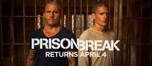 Importante personagem deve morrer na 5ª temporada de Prision Break