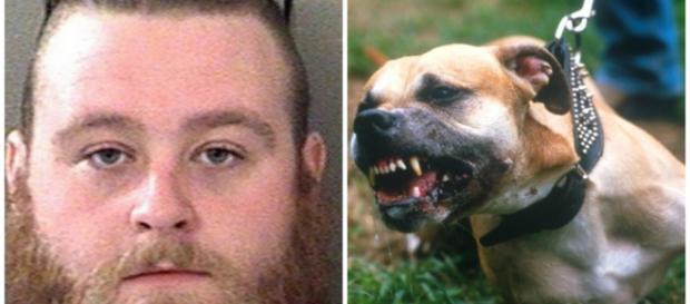 Bradley Hubbard é acusado de abusar da cachorra