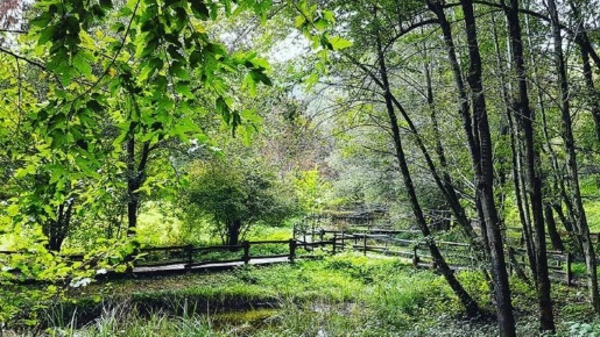 Milano week-end: gita fuori porta al Parco di Montevecchia, 31 ...