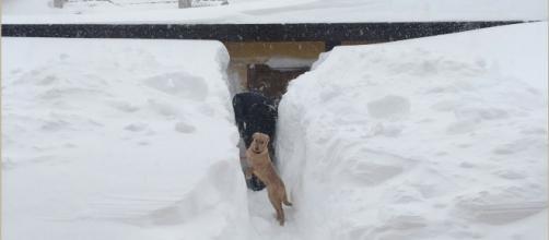 Neve, abbondanti nevicate in tutto l'Abruzzo