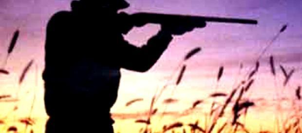 Germania, cacciatore spara e uccide ragazzo: credeva fosse un cinghiale