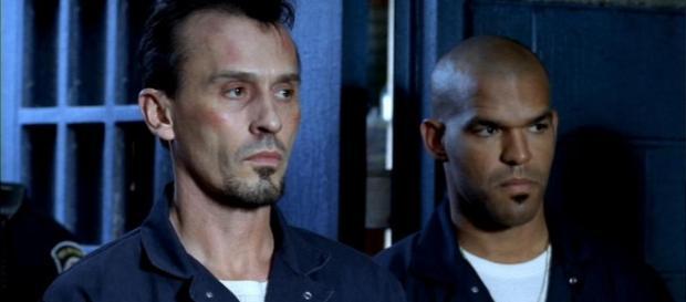 Robert Knepper quer algo fresco para T-Bag na 5ª temporada de Prision Break.