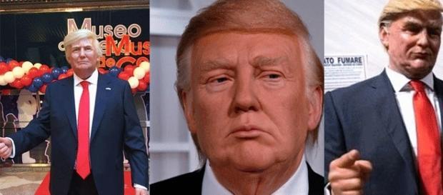 De g. à d. : le Trump de cire madrilène, londonien et romain. La mite Neopalpa donaltrumpican est beaucoup moins attrayante...