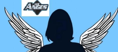 3 nouveaux candidats auraient signé pour Les Anges 9, vous allez être surpris.
