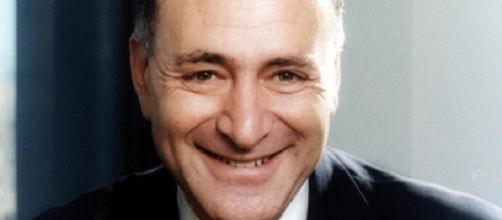 Chuck Schumer official portrait