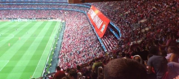 O Benfica volta a jogar no Estádio da Luz para a Liga NOS