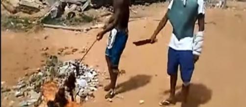 Detentos se alegram ao exibirem churrasco de suposta carne humana