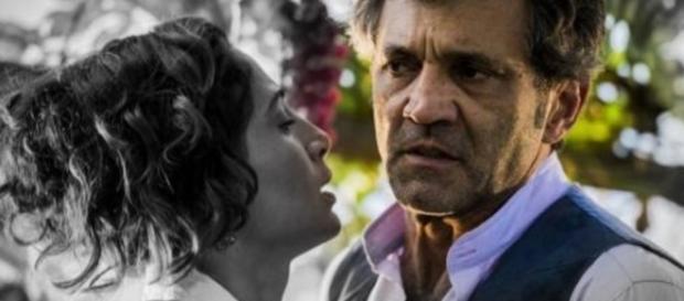 Domingos Montagner e Camila Pitanga - Google