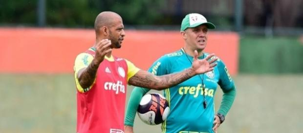 Palmeiras fará amistoso com a Macaca no domingo, antes de estrear no Campeonato Paulista