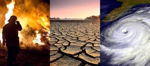 Incedi, siccità e tempeste: le cause del global warming