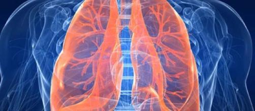 Vivere 6 giorni senza polmoni, è possibile - Data Manager Online - datamanager.it