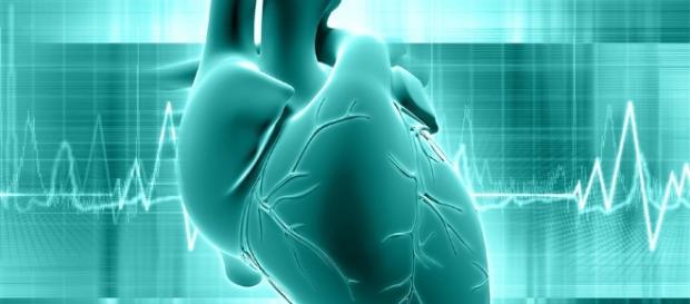 Lanzarán nuevo monitor cardíaco en forma de parche - elhospital.com