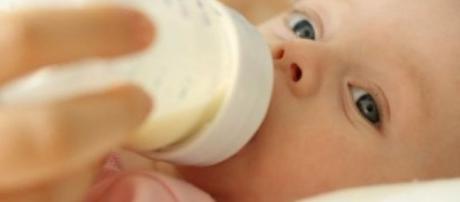 Vida emocional del bebé (0-6 meses) | Padres - facilisimo.com