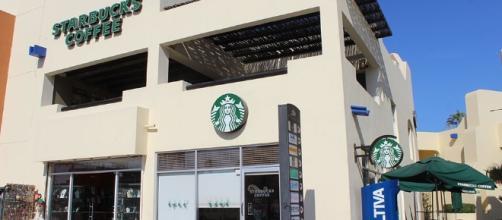 Starbucks, Coffee - Cabo San Lucas, Los Cabos, Mexico - loscabosguide.com