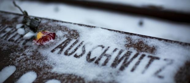 Auschwitz survivors mark Int'l Holocaust Remembrance Day[1 ... - com.cn