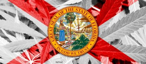 Analysis of Florida's Amendment 2 Medicinal Cannabis Law | Canna ... - cannamagazine.com