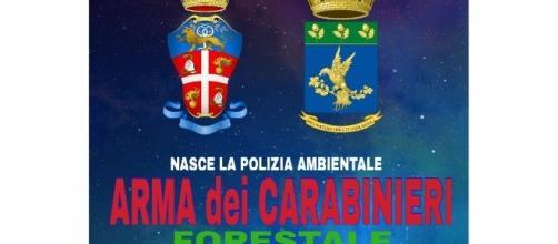 Accorpamento della Forestale nei Carabinieri - Pianeta Cobar