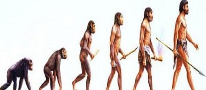 Quer descobrir os seus antepassados? Saiba como investigar