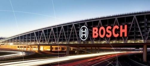 Bosch è a caccia di giovani talenti italiani.