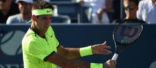 Juan Martin Del Potro bat David Ferrer en trois sets - US Open ... - eurosport.fr
