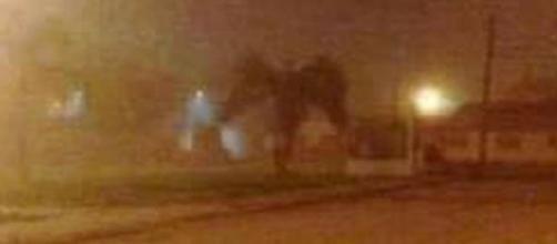 Sinistra criatura alada foi vista em rua de Phoenix (Richard Christianson)